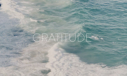 04. Morning Meditations - Gratitude