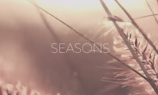 05. Morning Meditations - Seasons