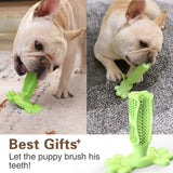 Soft Rubber Teeth Cleaning Toothbrush for Dogs