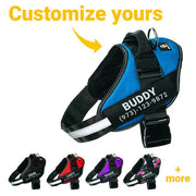 Personalized CuteHappyDogs NO PULL Harness
