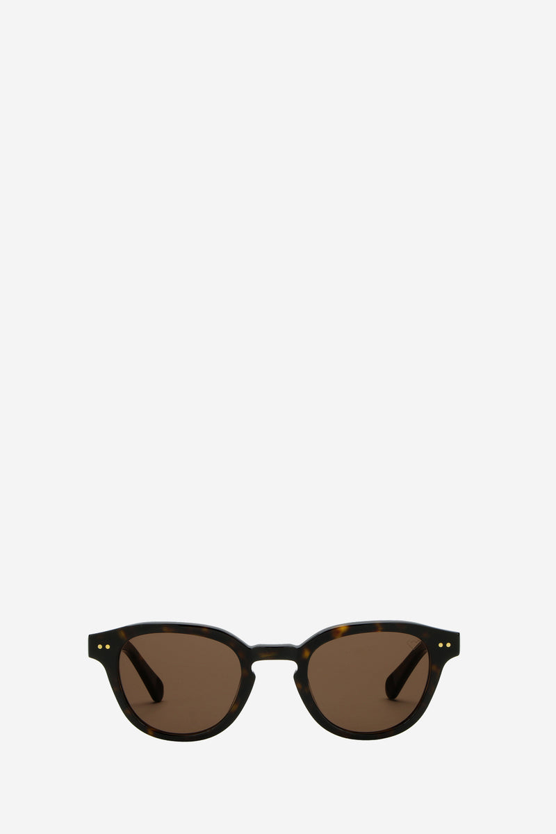 Carpe Diem Havanna Tobacco Sunglasses