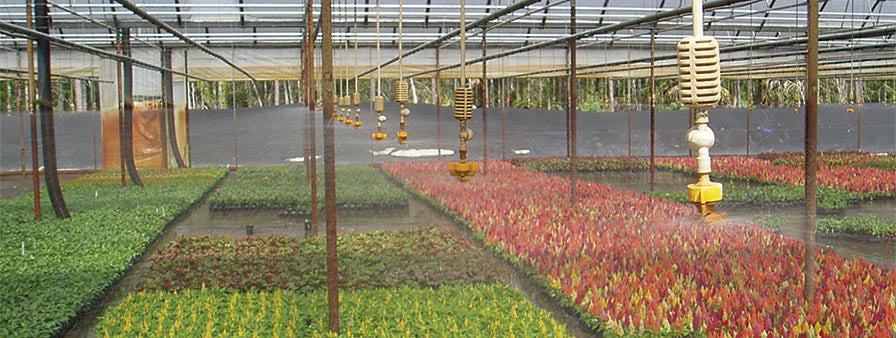 Netafim Nursery and Greenhouse Line Taken On by GrowIrrigation