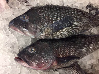 Locally Sourced WHOLE Black Bass