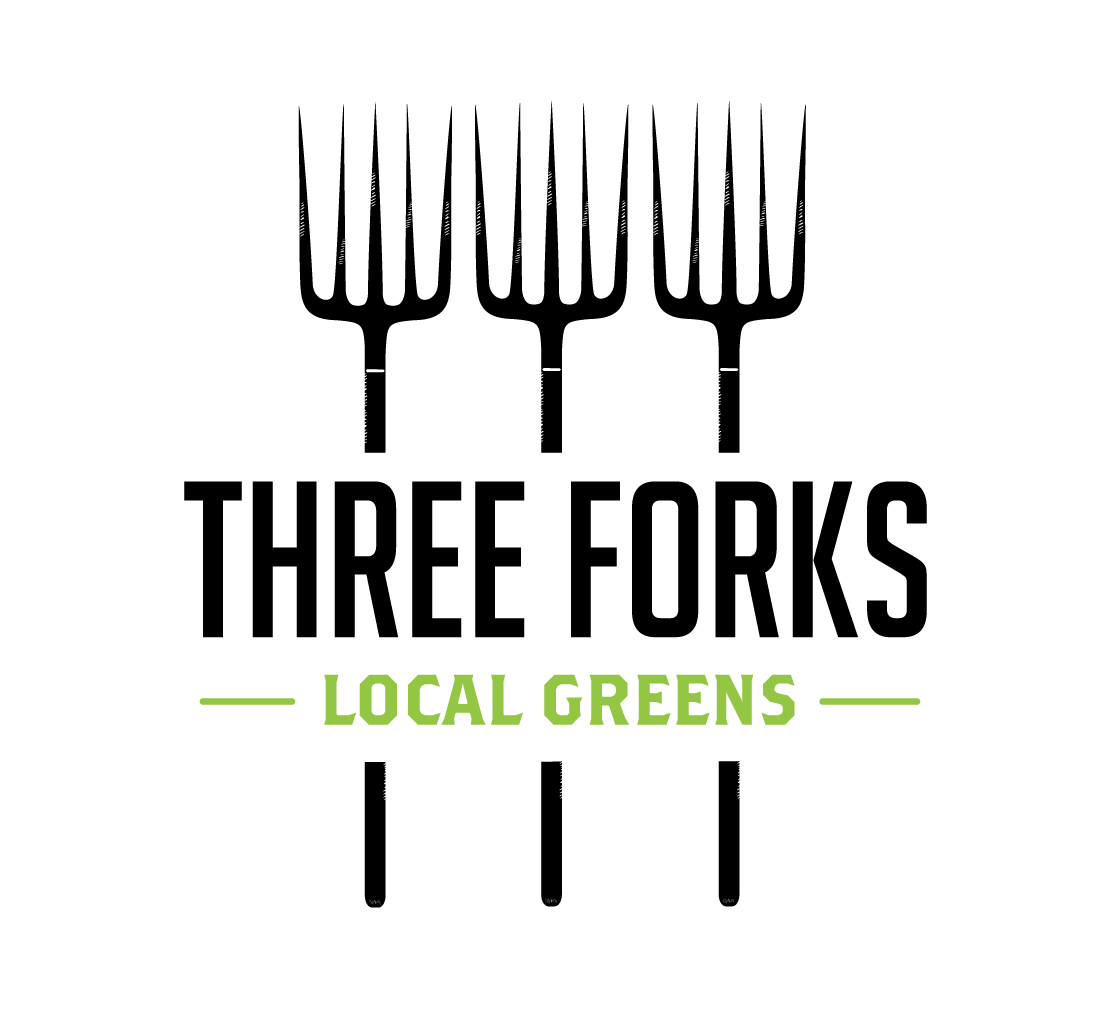 Three Forks Local Greens Living Bibb Head