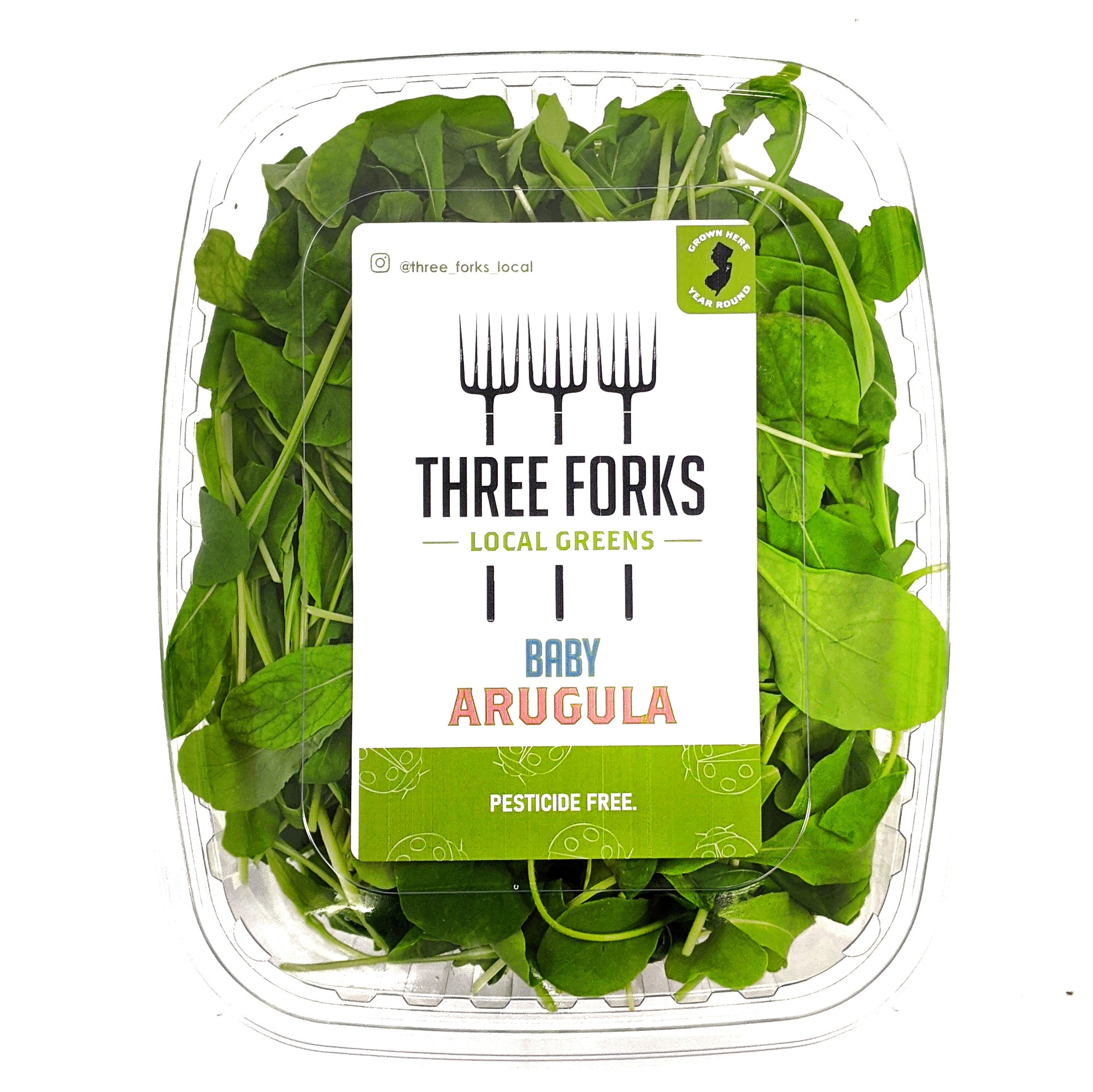 Three Forks Local Greens Baby Arugula