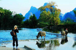 nature of guilin