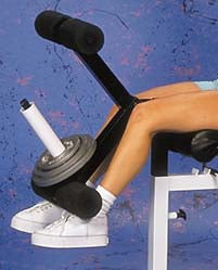 Flat/Incline/Decline Bench Leg Extension