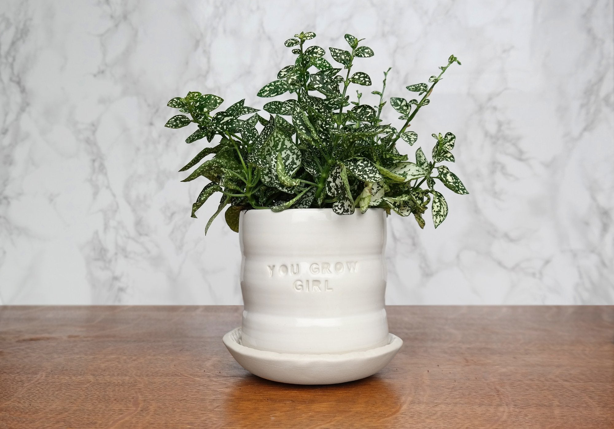 "White Ceramic Planter with Saucer - ""You Grow Girl"" - Stuck in the Mud Pottery"