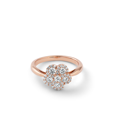 Oliver Heemeyer Alemandro diamond ring 5 in 18k rose gold.