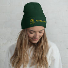 Load image into Gallery viewer, IT factor Cuffed Beanie