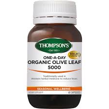 Thompsons Olive Leaf 5000 OneADay 60Cap