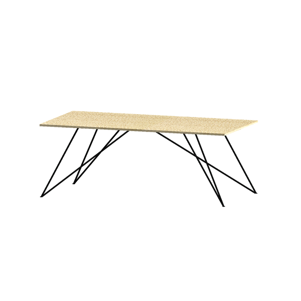 DINING TABLE, RECTANGLE, LARGE - Customer's Product with price 4600.00 ID M2i6qAPsPVX74E8DbTUrF8ZL