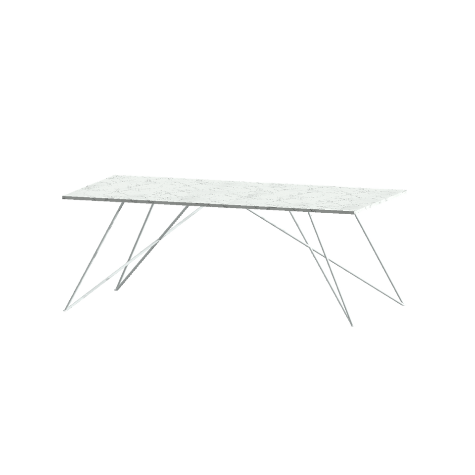 DINING TABLE, RECTANGLE, LARGE - Customer's Product with price 5700.00 ID 0CSAMs4JAHvv110aqQu10U6Y
