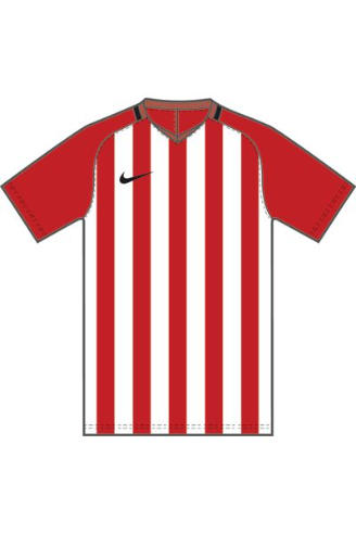 KIDS' NIKE STRIPE DIVISION III SS JERSEY