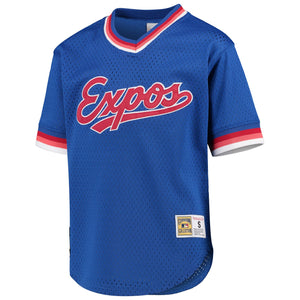 Montreal Expos Mitchell & Ness Blue Cooperstown Collection Mesh Wordmark V-Neck Jersey.