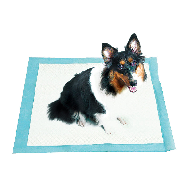 30 PACK PET TRAINING PADS