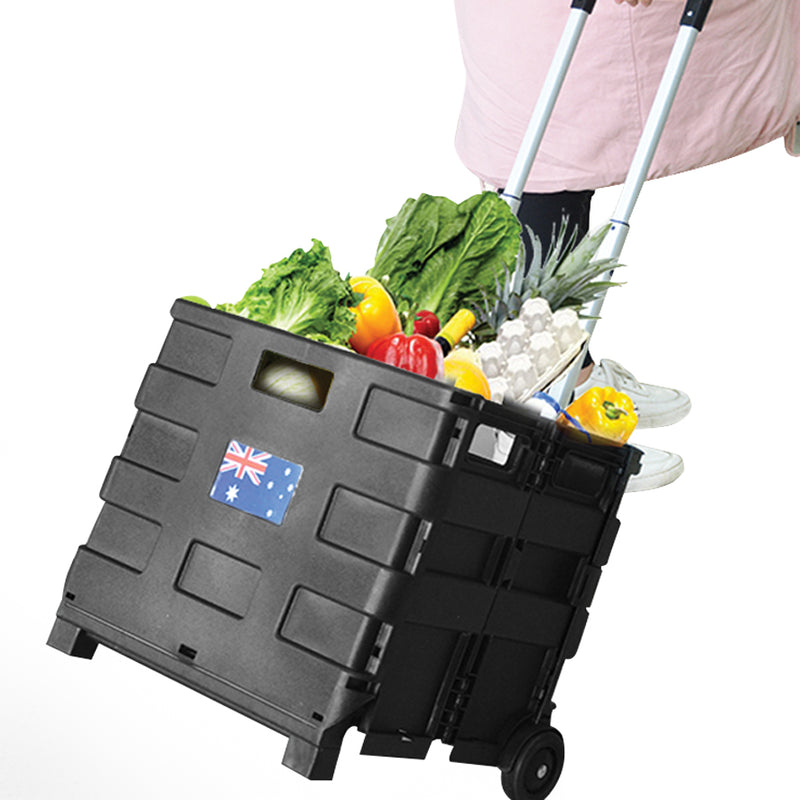 2-IN-1 FOLDING SHOPPING TROLLEY