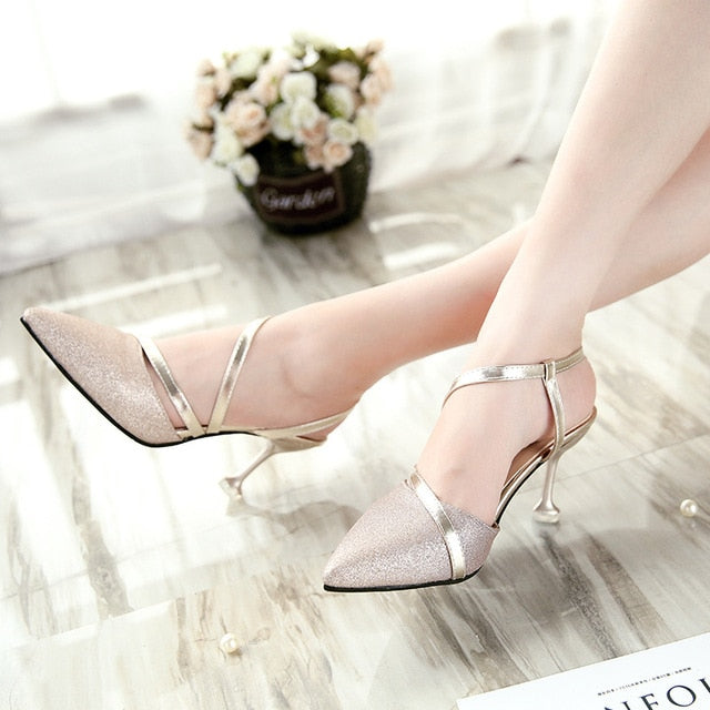 Lady Classic Shoes High Heel Pumps