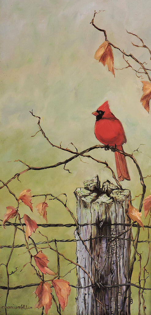 Cardinal on a Grape Vine