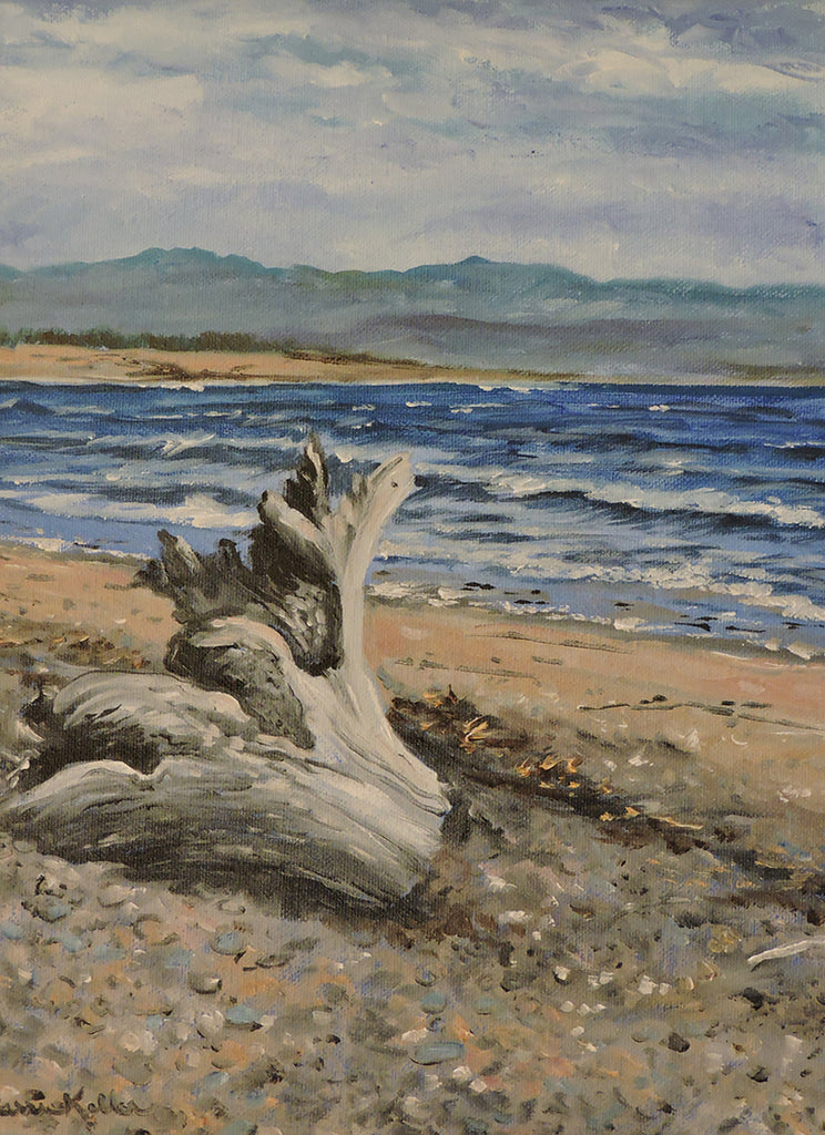 Driftwood on St. George's Bay