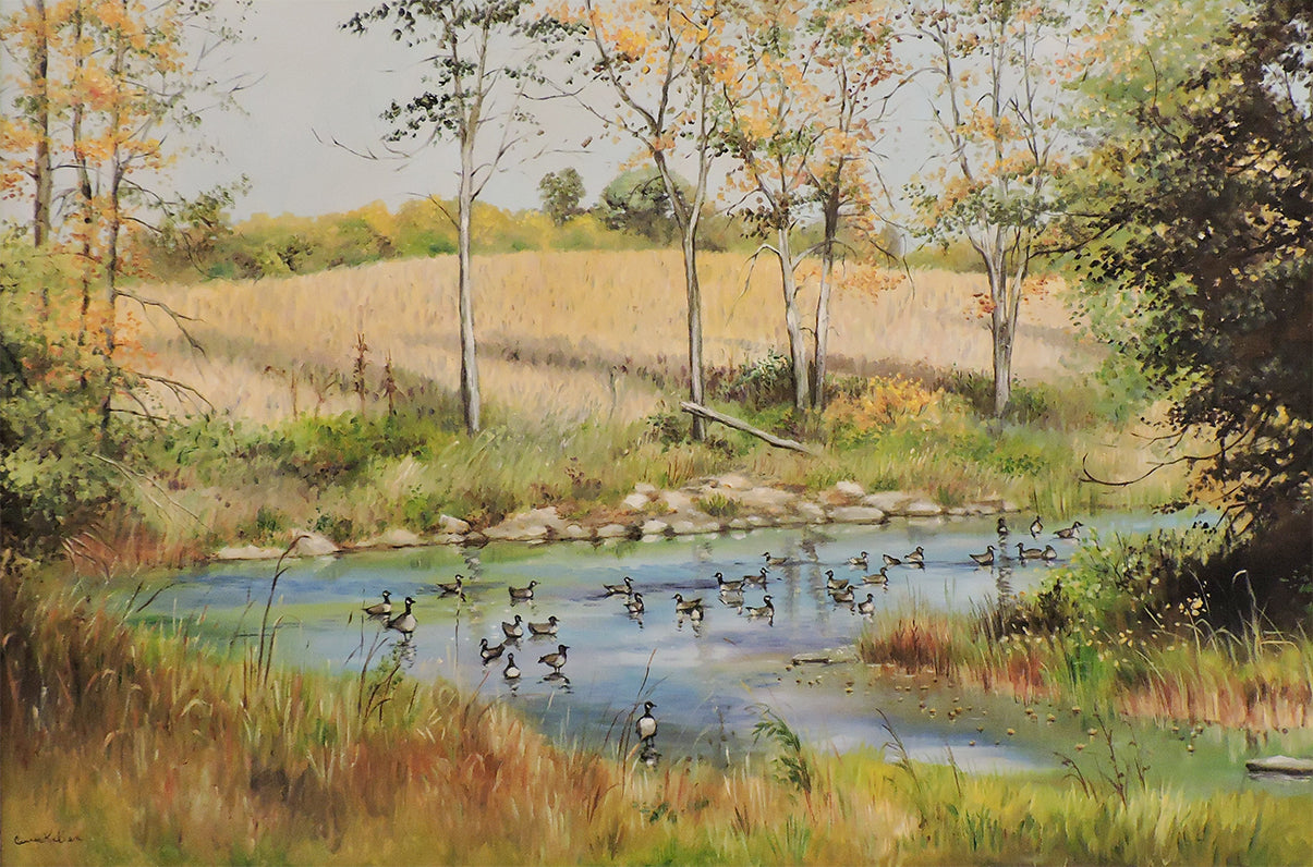 Geese on the South Nation - Oil on Canvas