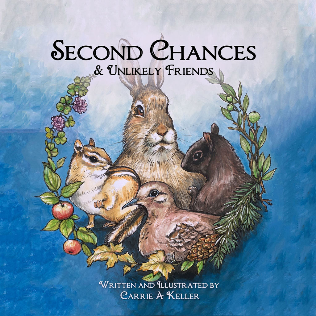 Second Chances & Unlikely Friends - Children's Book