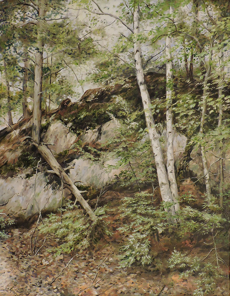 Shield Rocks and Birches - Oil on Canvas