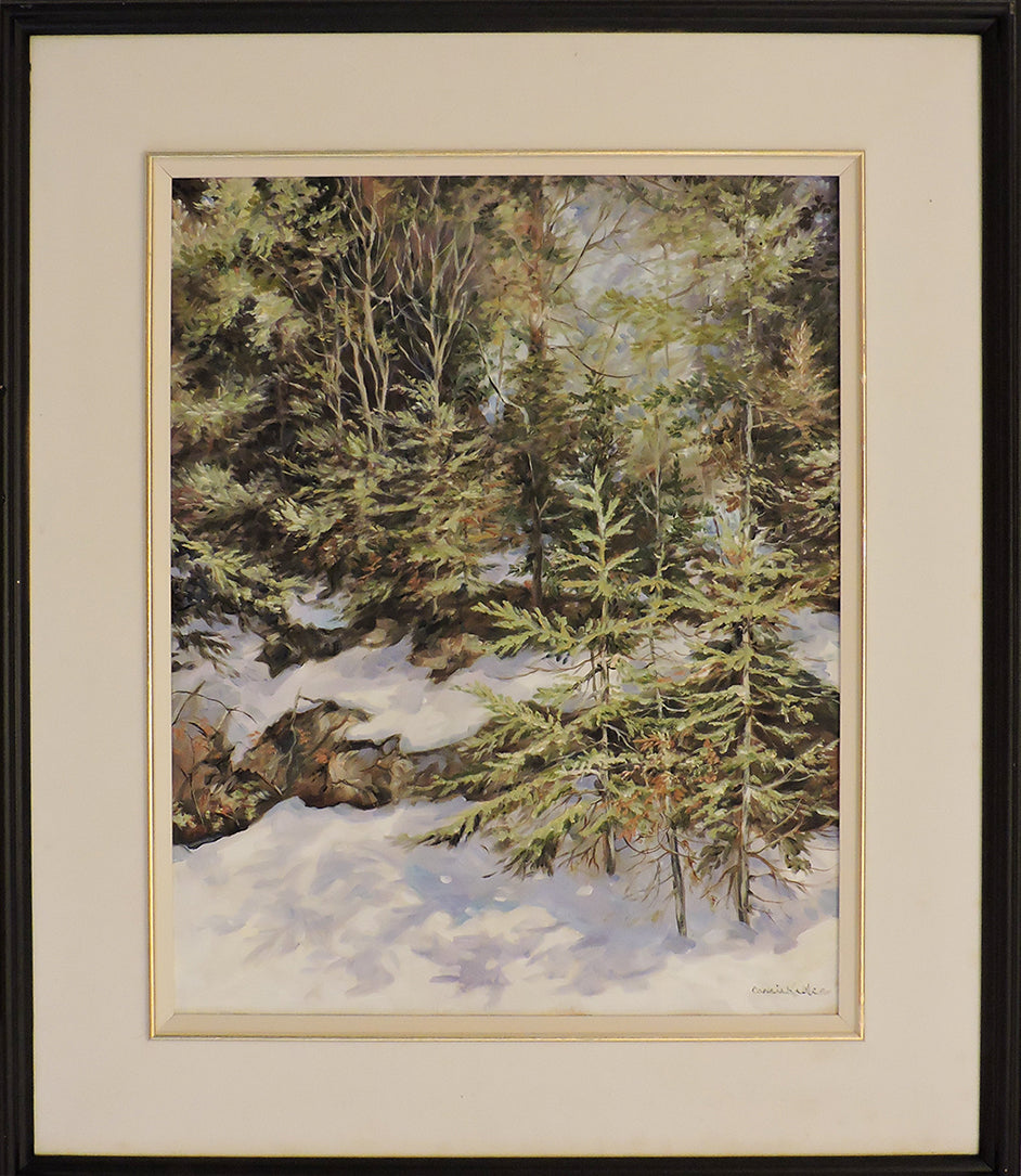 Spring in Algonquin Park - Oil Painting on Canvas Framed