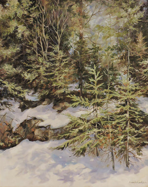 Spring in Algonquin Park - Oil Painting on Canvas