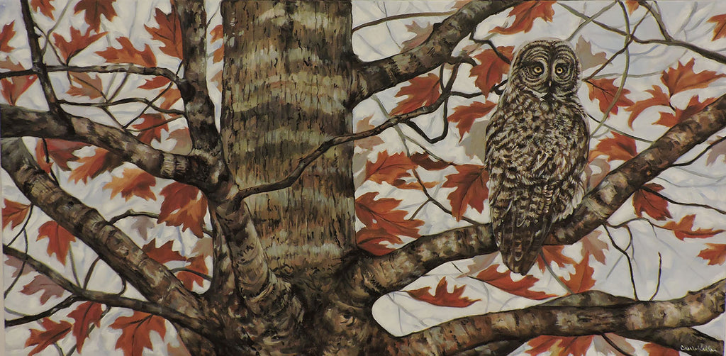 Hoo in the Oak - Oil on Gallery Wrap Canvas