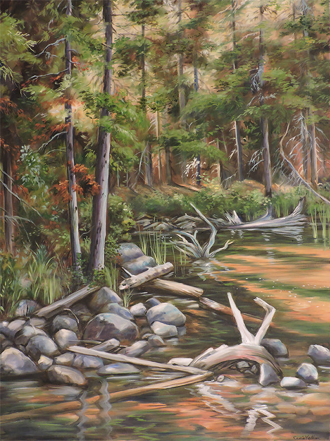 Lake Driftwood - Oil on Canvas