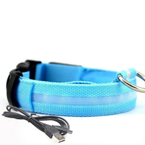 Led Dog Collar | Safety Light Up Dog Collar | USB Rechargeable- S / Blue