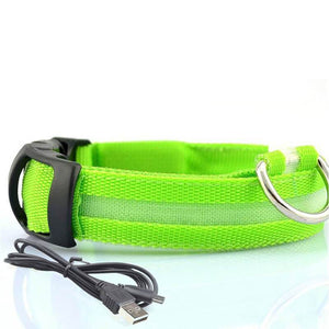 Led Dog Collar | Safety Light Up Dog Collar | USB Rechargeable- S / Green