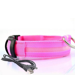 Led Dog Collar | Safety Light Up Dog Collar | USB Rechargeable- S / Pink
