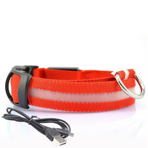 Led Dog Collar | Safety Light Up Dog Collar | USB Rechargeable- S / Red