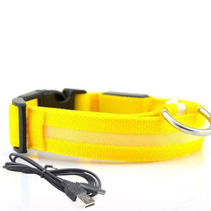 Led Dog Collar | Safety Light Up Dog Collar | USB Rechargeable- S / Yellow