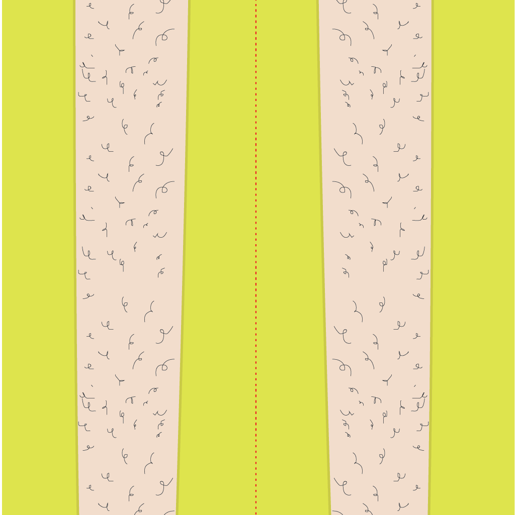 Daddy Long Legs vinyl ski wrap