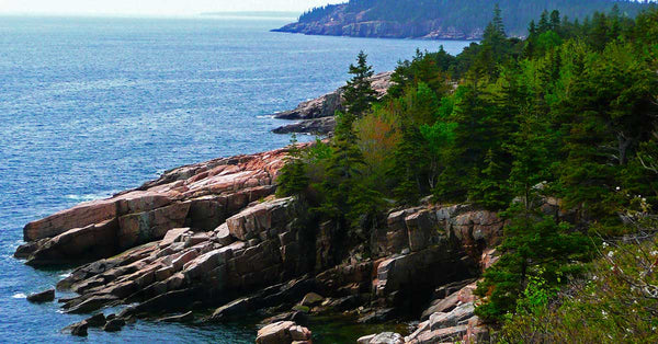 Acadia National Park's Birthday is February 26th!