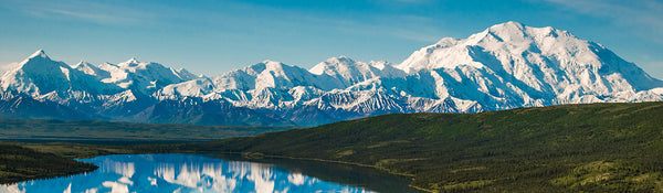 Best Things To Do in Denali National Park