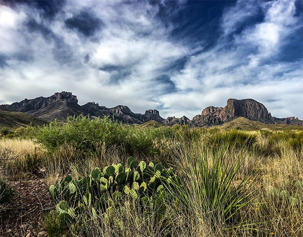Celebrate Big Bend National Park's Anniversary