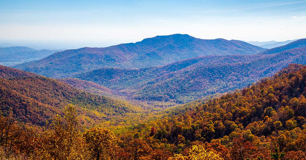 Best Things to do in Shenandoah National Park
