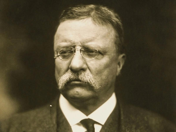 Theodore Roosevelt and the National Park Service