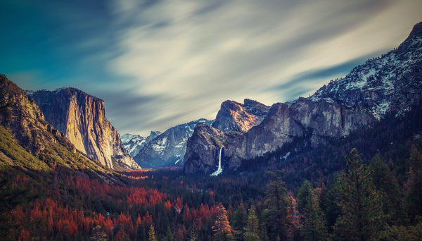 Celebrate Yosemite's 125th Anniversary