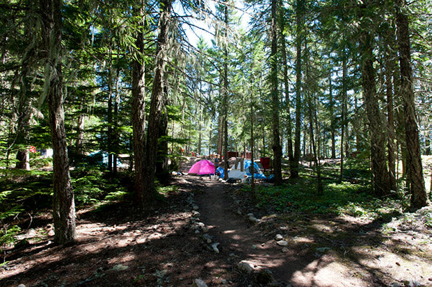 Camping, North Cascades National Park   National Park Posters