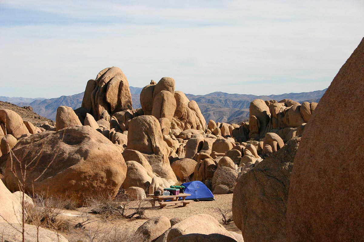 Joshua Tree National Park | Camping