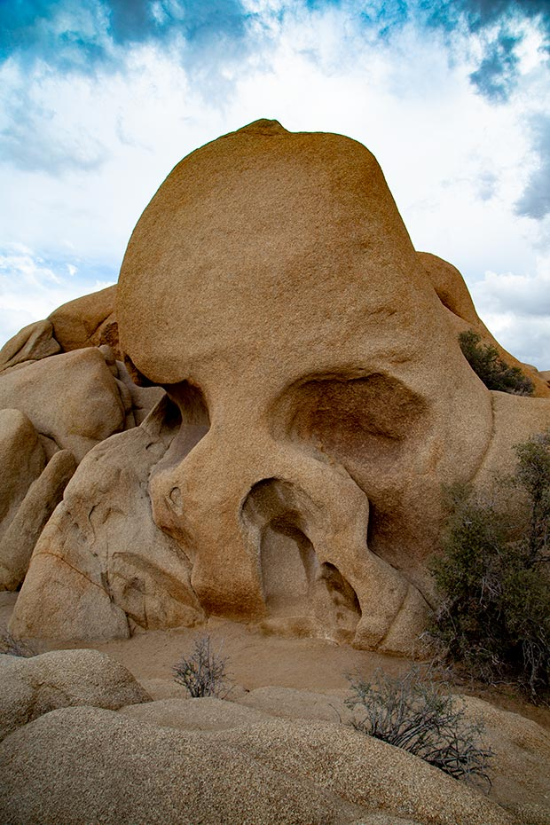 Joshua Tree National Park | Skull Rock