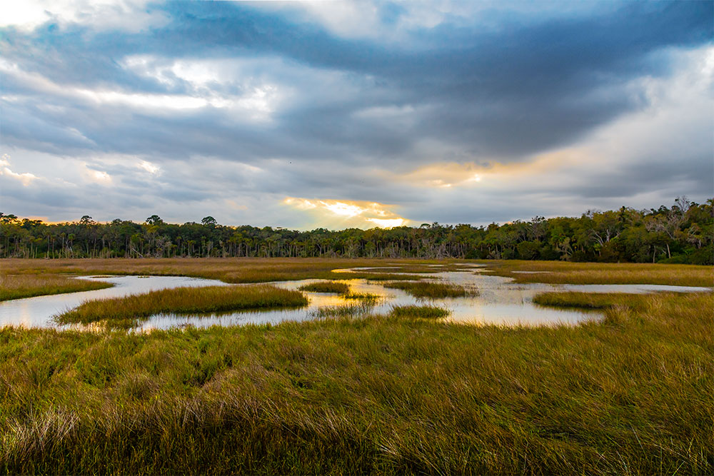 Wetlands at Round Marsh | National Park Posters