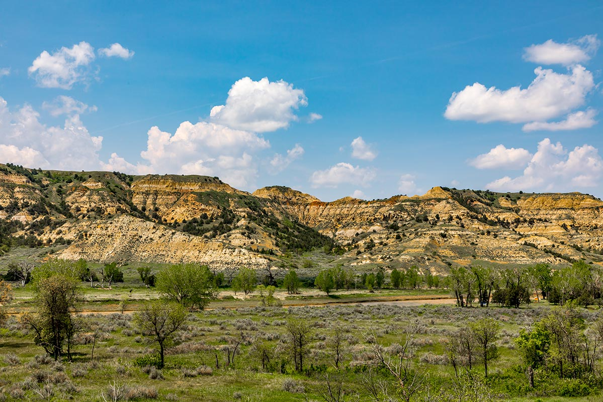 Cottonwood Campground, Theodore Roosevelt National Park | National Park Posters