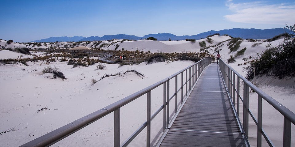 Interdune Boardwalk