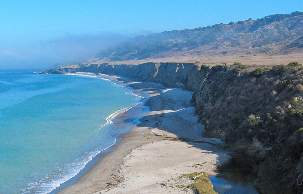 Water Canyon Beach and Torrey Pines | Channel Islands National Park